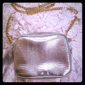 Victoria's Secret Purse Silver with Gold Chain